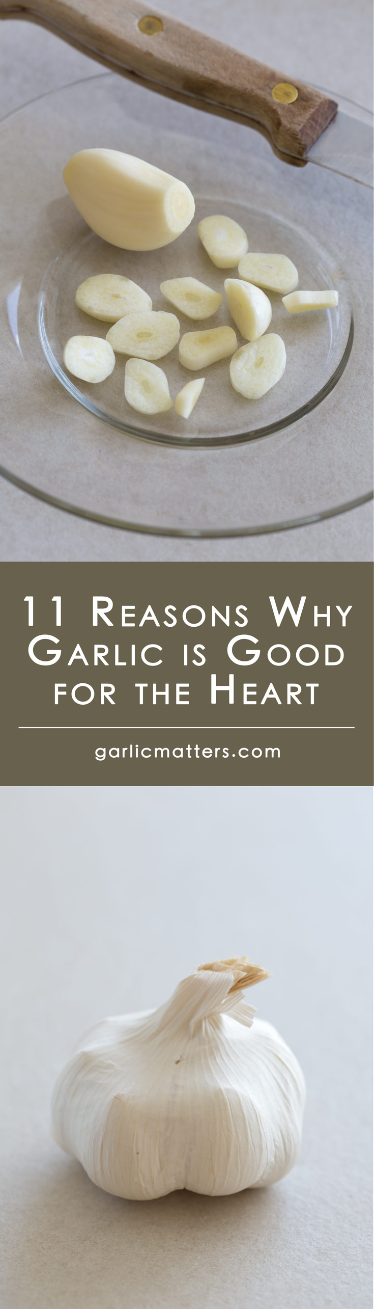 11 Reasons Why Garlic Is Good For The Heart  Garlic Matters-5477